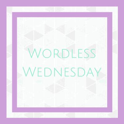 Wordless Wednesday – 8