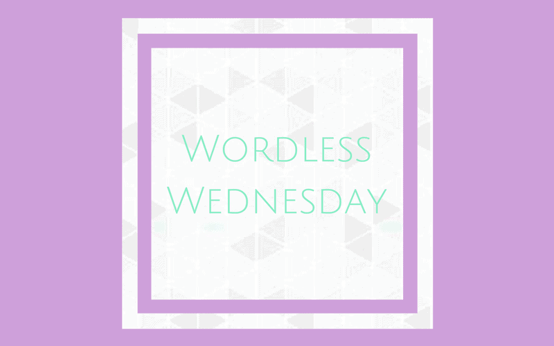 Wordless Wednesday – 8