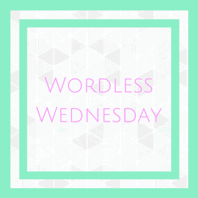 Wordless Wednesday – 6 and 7