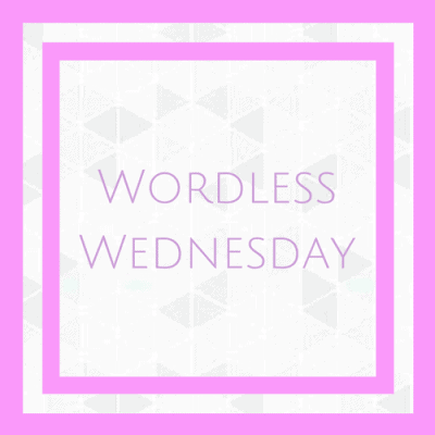 Wordless Wednesday – 5